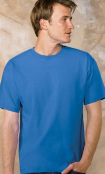 B506 Tagless 100% Cotton short Sleeve T-shirt Mens